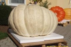 2011_286-5kg